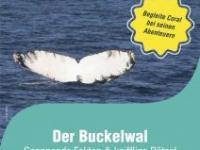 Der Buckelwal